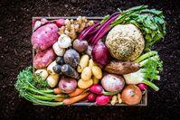 Imagen sobre el tema de los alimentos para el sistema inmunológico.