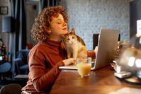 Imagen sobre el tema de la mujer en la computadora portátil