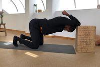 Imagen del tema 19 Rutina de movilidad MIN: más movilidad para todo el cuerpo