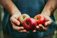 Imagen sobre el tema del hombre con manzanas